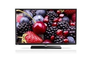 "Televize Toshiba L3 48"""